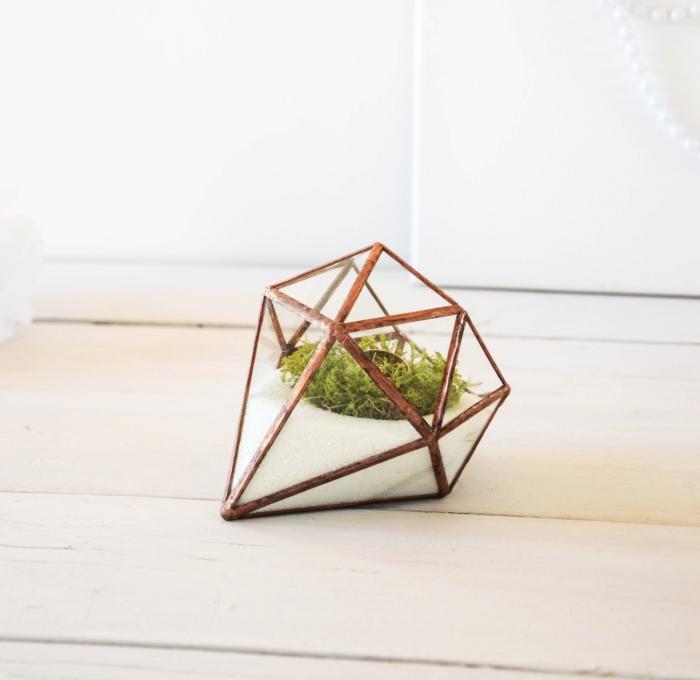 diamond terrarrium