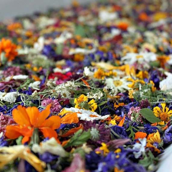 dried flower confetti