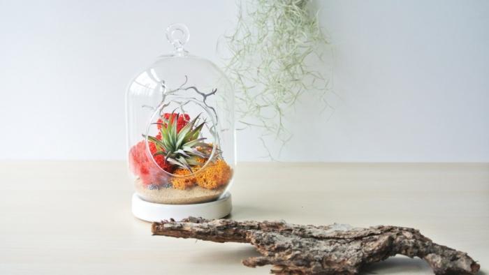 flower terrarrium