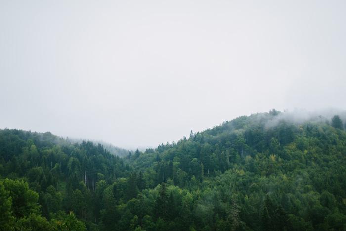 ukrainian mountains