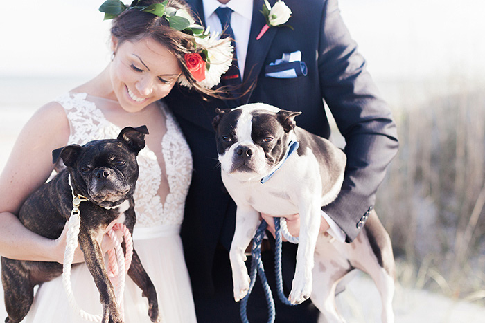 bride and groom portrait with dogs