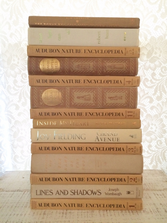 bookworm decor