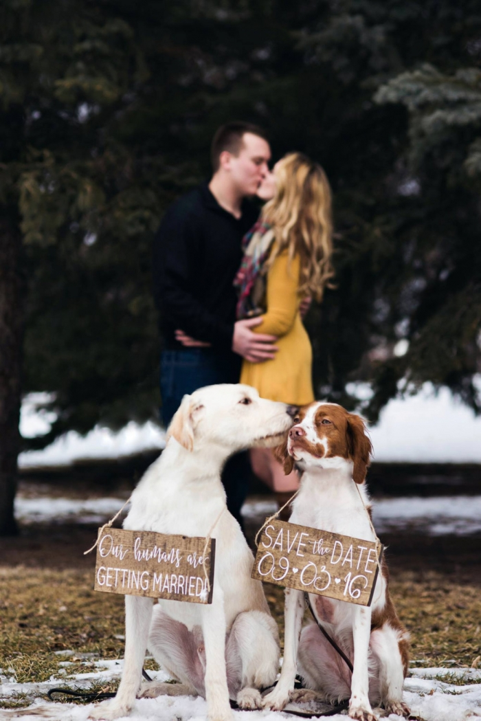 dog wedding signs