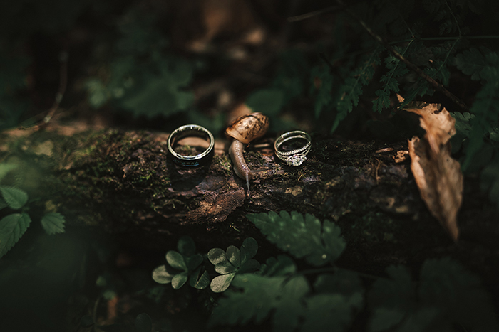 wedding rings and snail