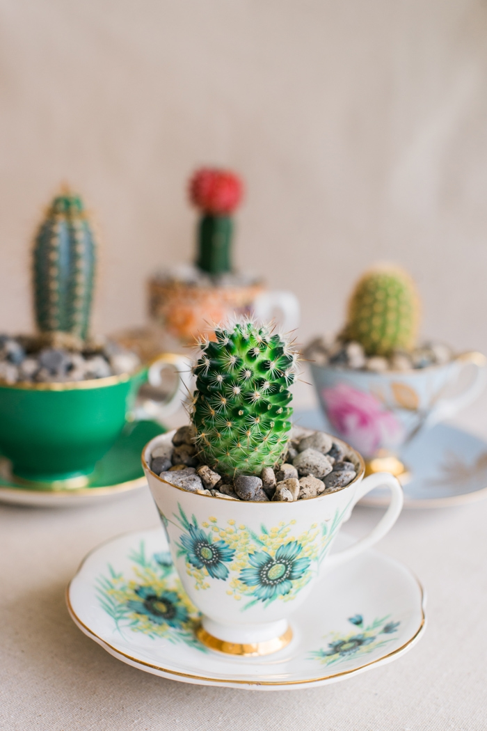 cactus favors for wedding