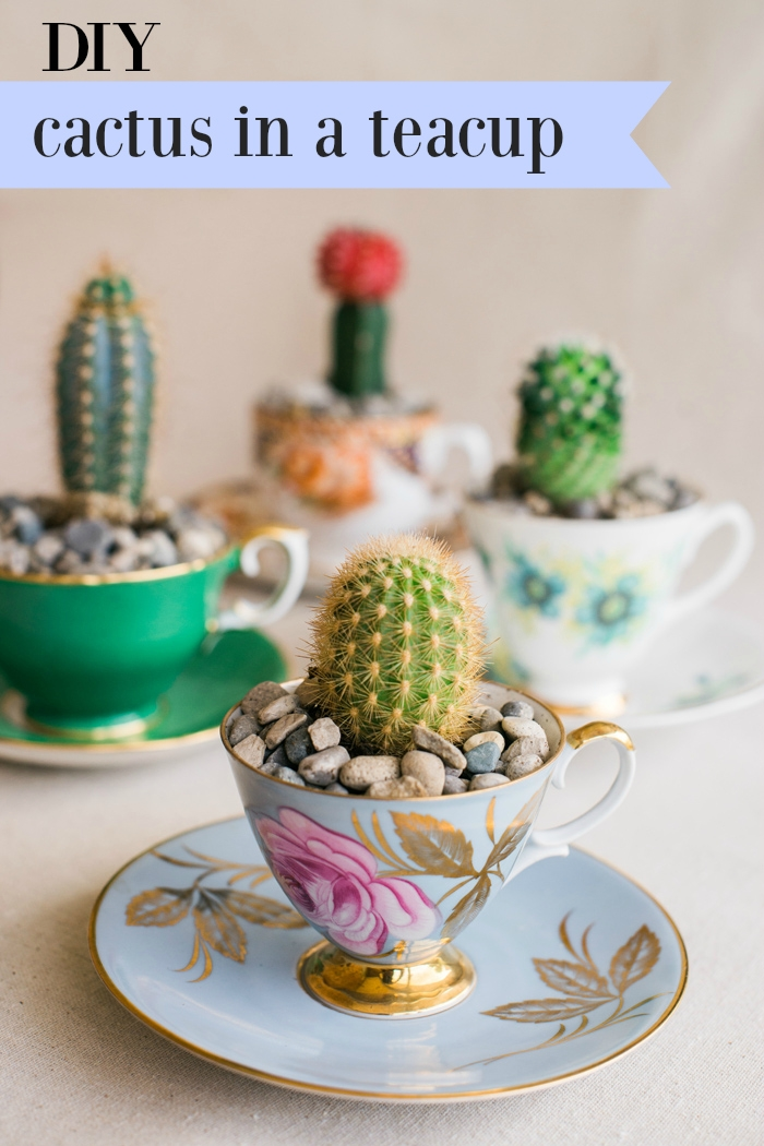 DIY CACtus in a teacup favor