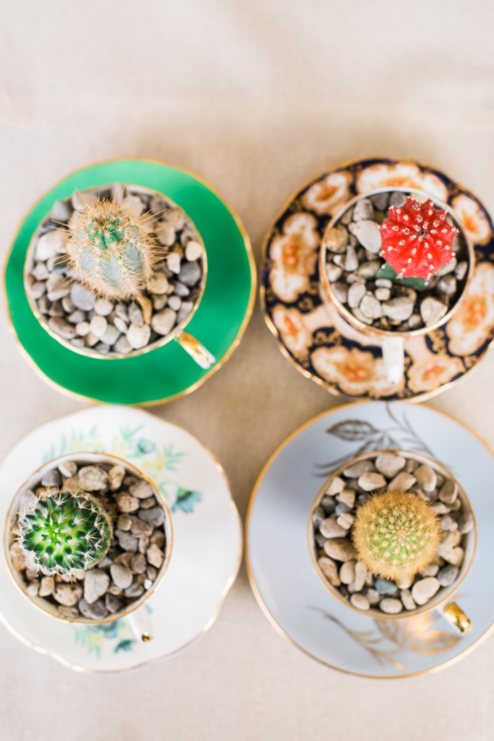cactus favors for weddings