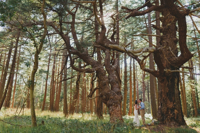 Hornby-Island-BC-elopement-Jennifer-Armstrong-Photography-38