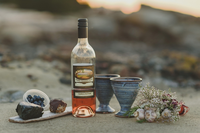 Hornby-Island-BC-elopement-Jennifer-Armstrong-Photography-79