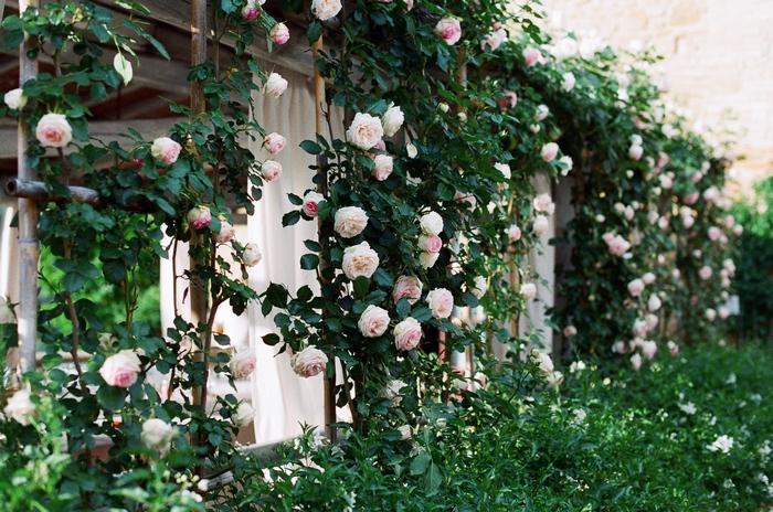 florence-tuscany-intimate-wedding-rachel-joseph-56