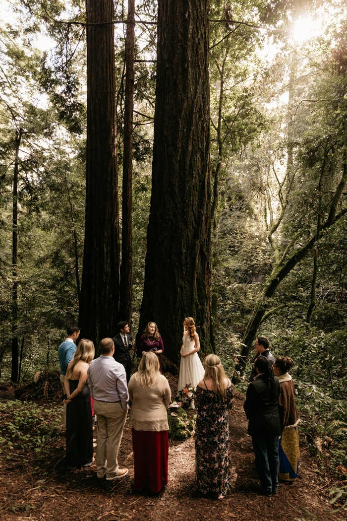 california redwoods wedding small