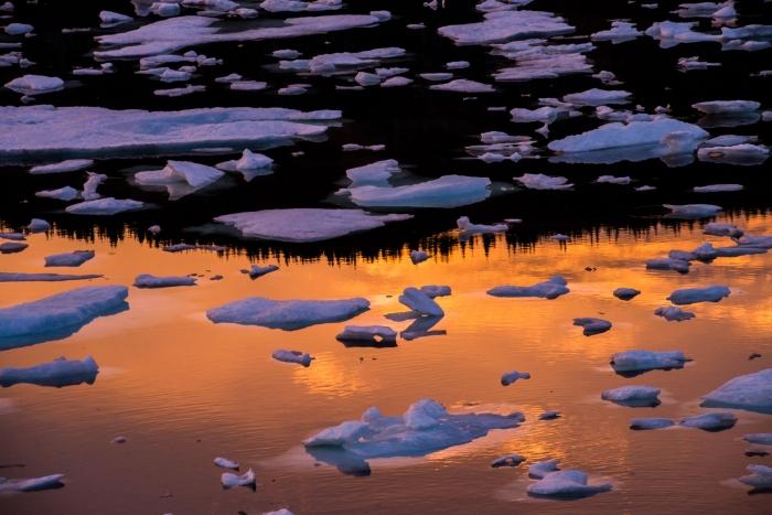 crow-head-nfld-icebergs-sunset