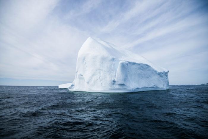 twilingate icebergs